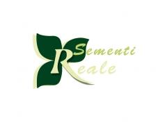 realesementi-advance-communication